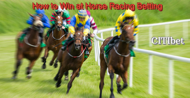 How to Win at Horse Racing Betting Online