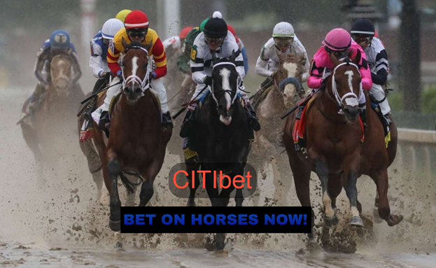 Know about Horse Racing Betting