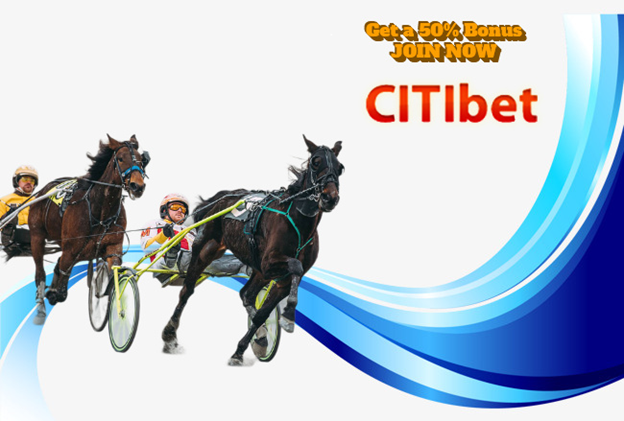Horse Racing – Harness Betting Fixed Odds