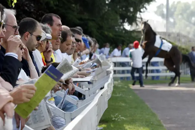 Horse Racing News: The Psychology of a Gamble