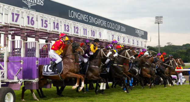 5 Tips for Betting on Horses