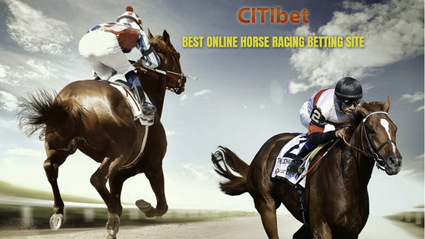 Singapore Horse Betting: Where to Bet on Horses?