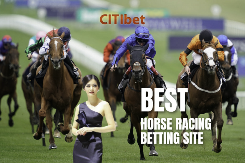 Make Money by Betting on Horses