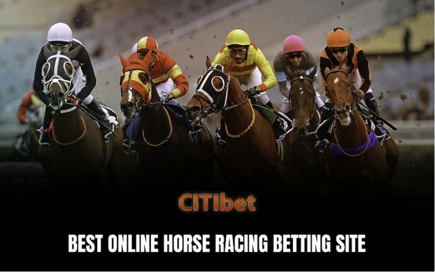 Why You Should Not Bet More on Horse Racing?